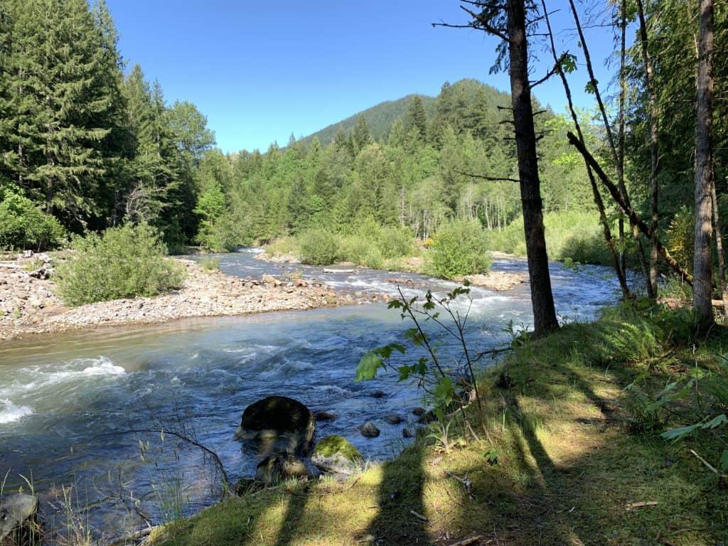 Danner Oregon
